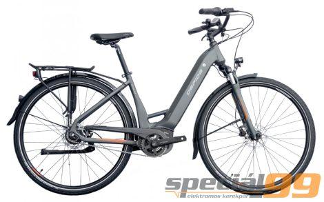 Gepida Bonum Curve Altus 9 electric bicycle BOSCH