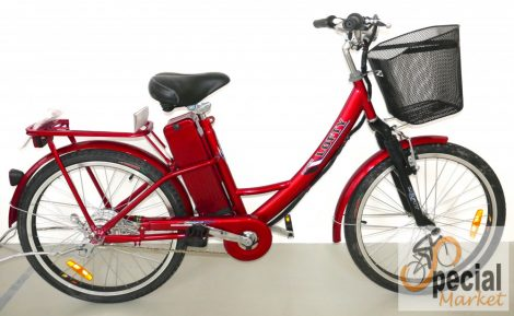 """Lofty power 24 """"electric bicycle Lithium battery"""